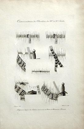 Plate 46