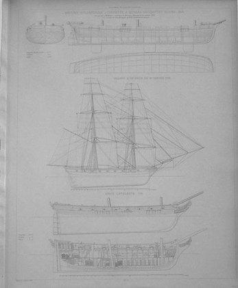 Marine Hollandaise
