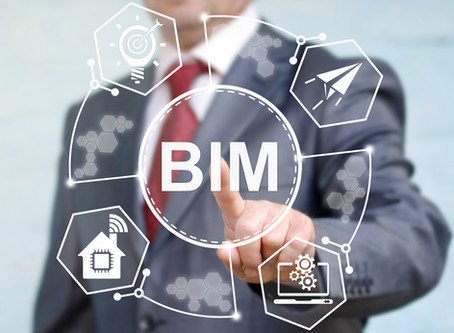 BIM at a project level: The BIM manager