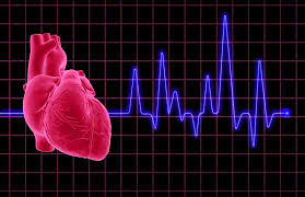 Illuminating Cardiac Disease in Athletes