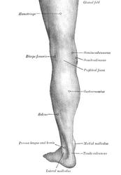 Chronic Hamstring Injuries Got You Down?