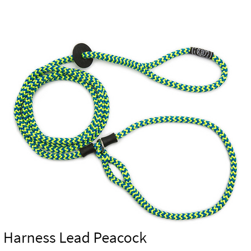 Harness Lead Peacock