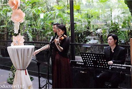 香港古典音樂鋼琴手小提琴