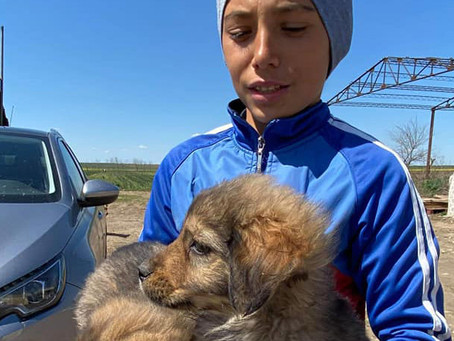 Ionuț: The Boy Rescuer saves five more lives