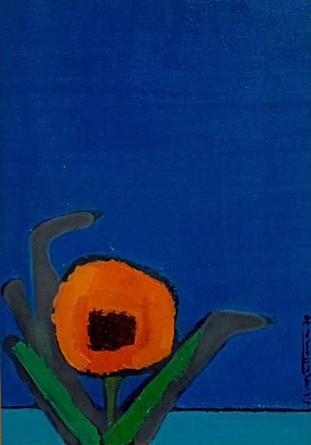 """""""Fiore alla finestra"""""""