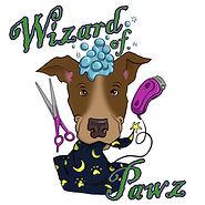 wizard of pawz.jpg