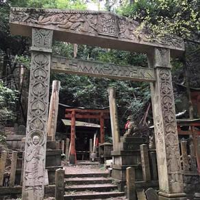 個人山行 京都一周トレイル(完結編)