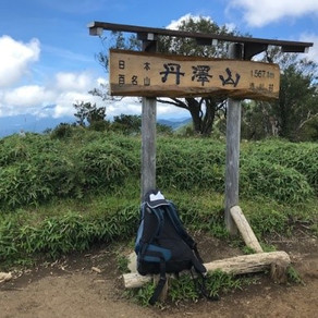 個人山行    大倉~丹沢山(1,567m)~宮ケ瀬