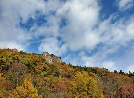 個人山行 嵩山 (789m)