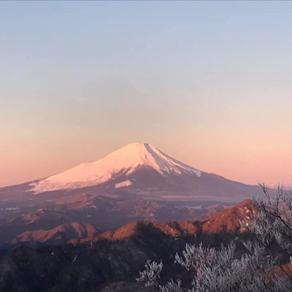 個人山行 丹沢山峰・年始縦走 塔の岳(1,491m)~丹沢山(1,567m)