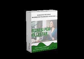 BIZNESI FILLESTAR BOX.png