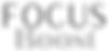 Logo Focus Boost.png