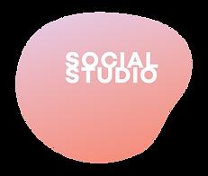 Social Studio QLS