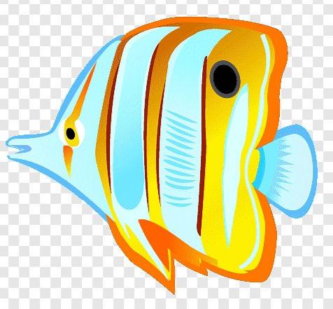 png-transparent-tropical-fish-saltwater-
