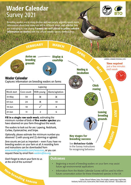 Wader_Calendar_infographic.jpg