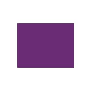 Wifi Symbol - Purple.png