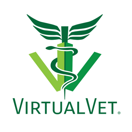 VirtualVet business model is the future of data