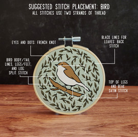 embroidery kit bird suggested stitch placement.jpeg