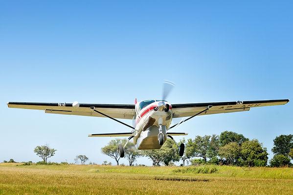 safari air pic 3.jpg