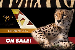 Etihad with web.jpg