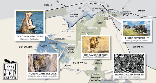 Desert and Delta Safaris MAP 1.jpg