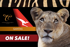 QANTAS BIG FIVE NEW AD.png