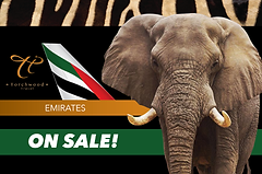 EMIRATES BIG 5 NEW.png