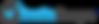 new blue logo.png