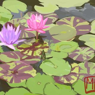 watergarden_01.png
