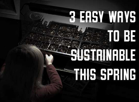 3 Easy Ways to Be Sustainable This Spring