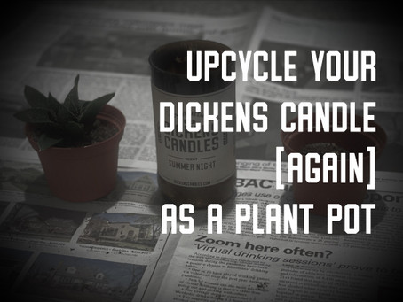 Upcycle Your Dickens Candle (Again) as a Plant Pot!