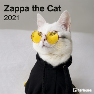 ZAPPA LE CHAT 2021 30X30 15,90 €