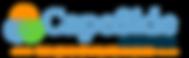 web logo addiction.png