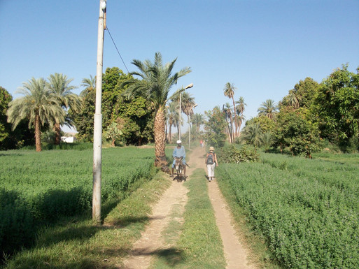 Hiking trail in Upper Egypt.