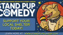 Stand Pup Comedy Show