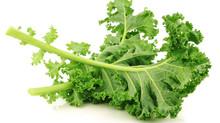 How to keep Kale fresh #nationalkaleday