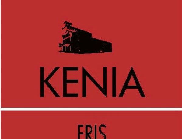 SINGLE ORIGIN KENIA BONEN