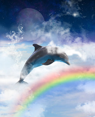 Dolphin and clouds.jpg