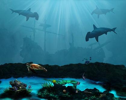 shipwreck reef small.jpg