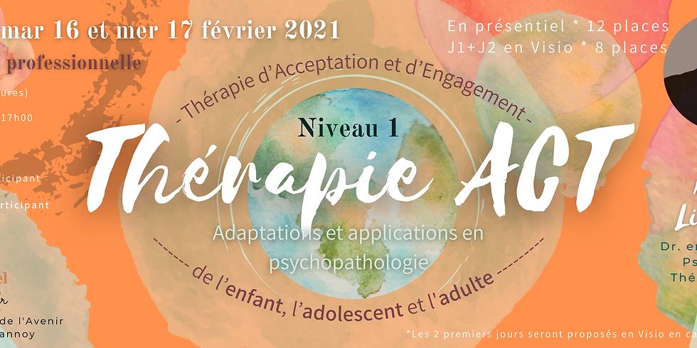 Formation pro Thérapie ACT - Niveau 1