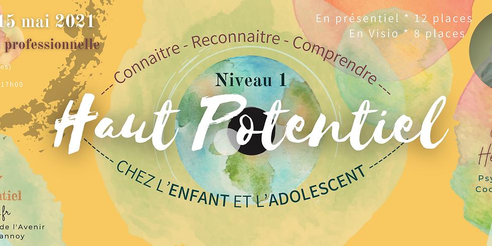 Formation pro Niv1 Comprendre l'ENFANT à Haut Potentiel
