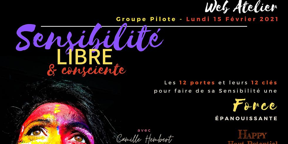 """Atelier Virtuel """"Sensibilité Libre"""" - groupe pilote"""