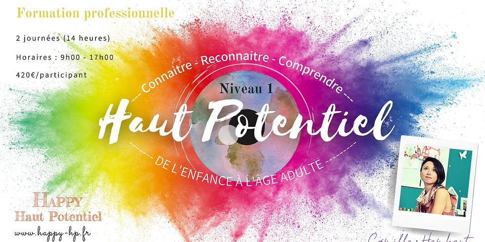 Formation pro Niv1 Comprendre la personne à Haut Potentiel / En ligne