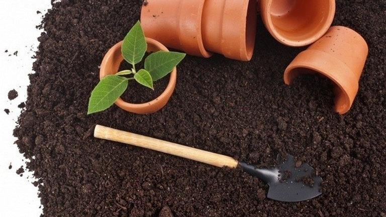 Каким же должен быть плодородный грунт, чтобы получить качественную рассаду?
