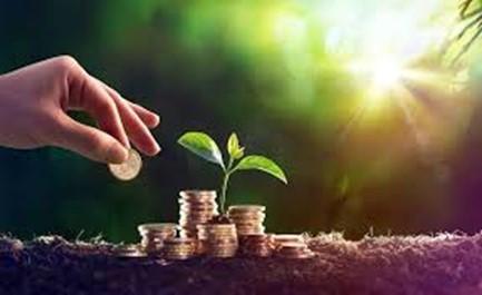 Comment gérer des appels d'offres et générer des économies durables ?