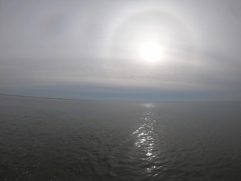 winter sun1.jpg
