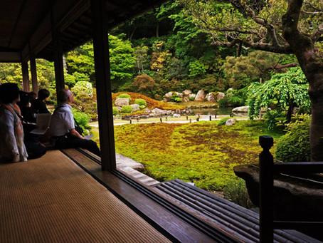 "Ways to escape from the ""Sakura hype""桜シーズンの混雑を避ける"
