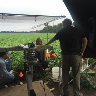 Del Monte Corn Shoot