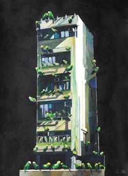 Parakeet Villa - 2015
