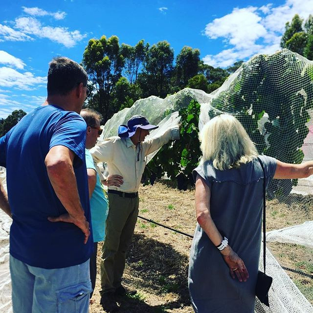 Margaret River wine tours, behind the scenes